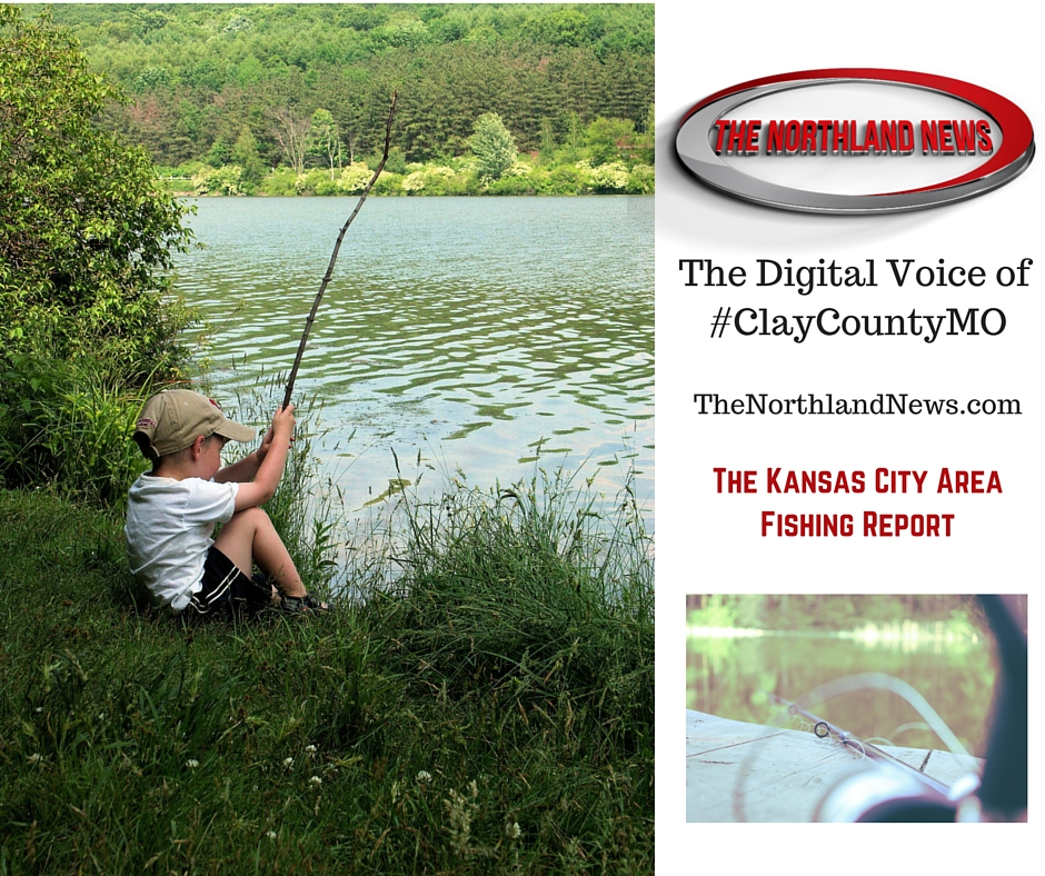 Northwest missouri and kansas city area fishing report for Fishing report kansas