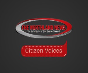 Citizen Voices