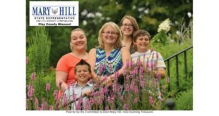 Mary Hill for Missouri State Representative